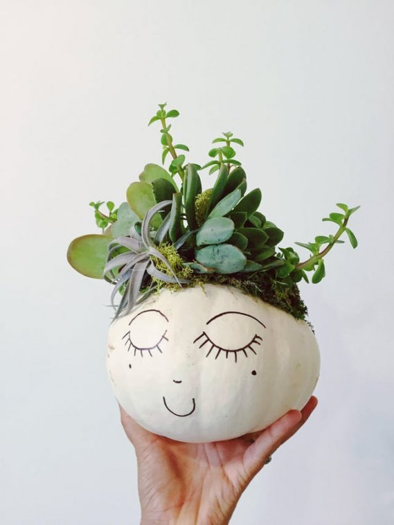 diy-pumpkin-succulent-planter