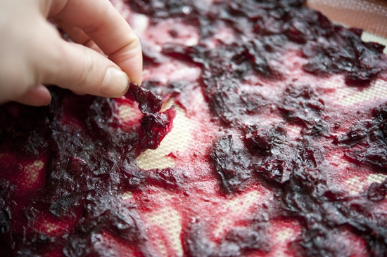 """Homemade Gift Idea: Cranberry Chews"""" « The Official Site of ..."""