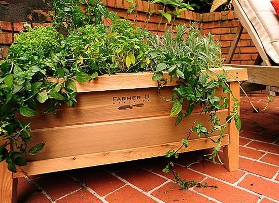 cedar-urban-planter
