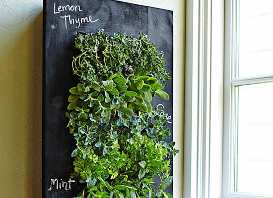 Friday Lust List: Small Space Gardening - GeorgiaPellegrini com