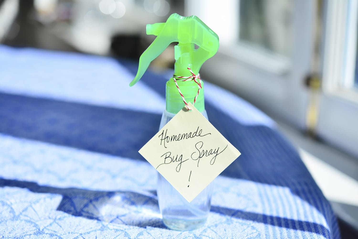 """Homemade Bug Spray"""