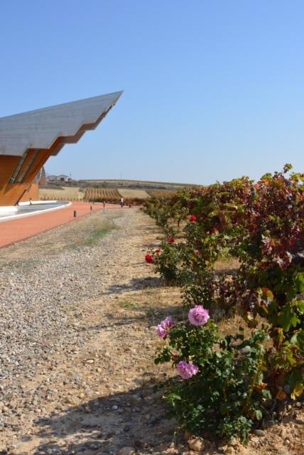 A Wine Safari Through Northern Spain: Part 2