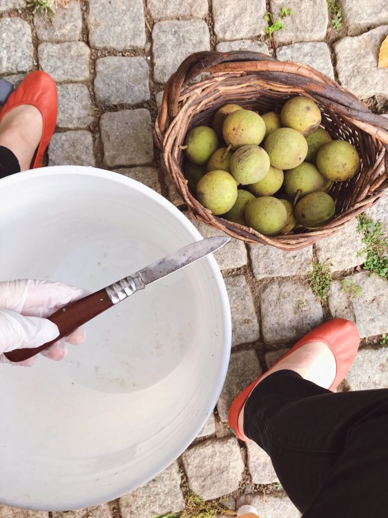 How-to-clean-black-walnuts-16