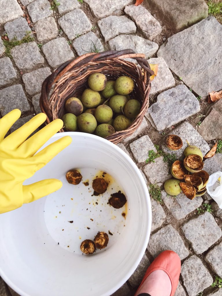 How-to-clean-black-walnuts-17