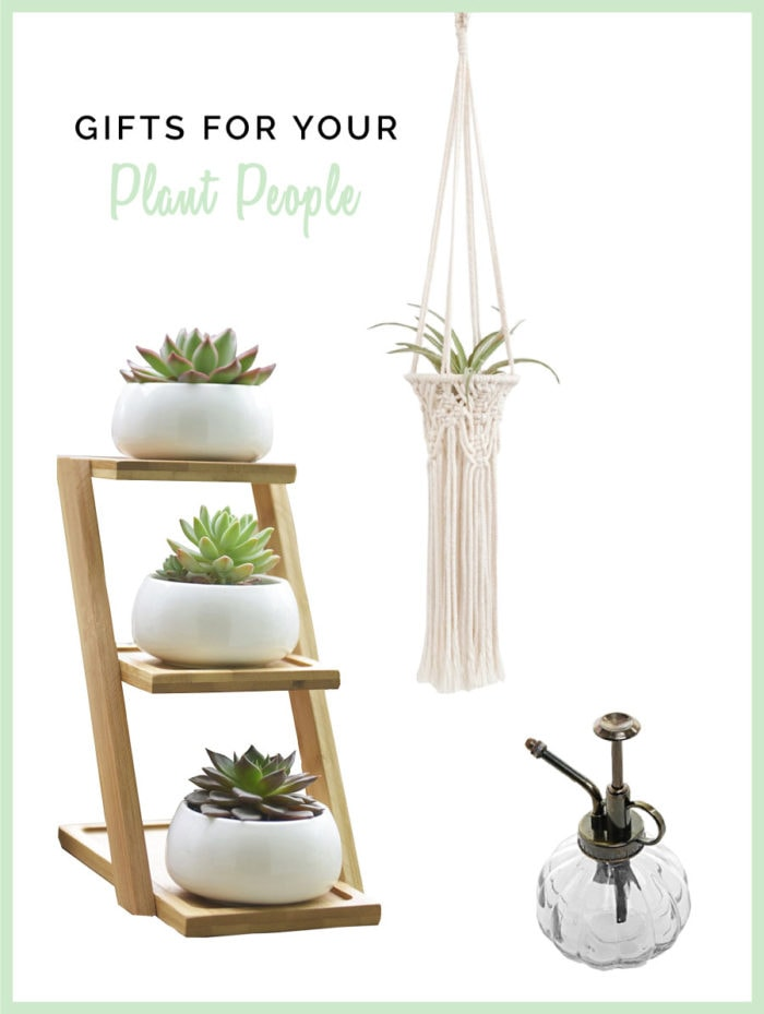 DIY Homemade Gift Ideas for The Plant Obsessed