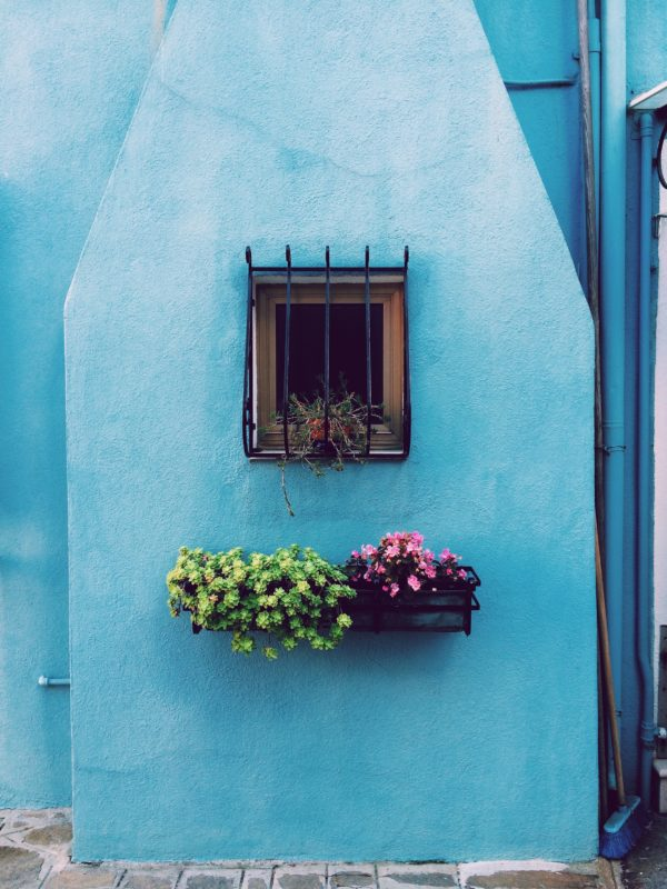 What You Should Plant in Your Window Boxes This Spring