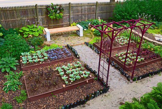 How-to-Build-a-Raised-Bed-2
