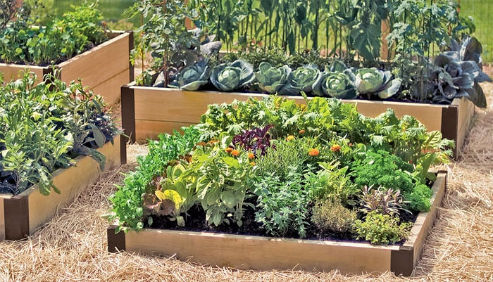 How-to-Build-a-Raised-Bed-4