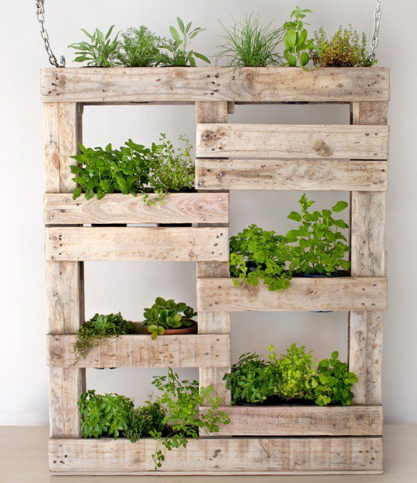 How To Create A Vertical Garden