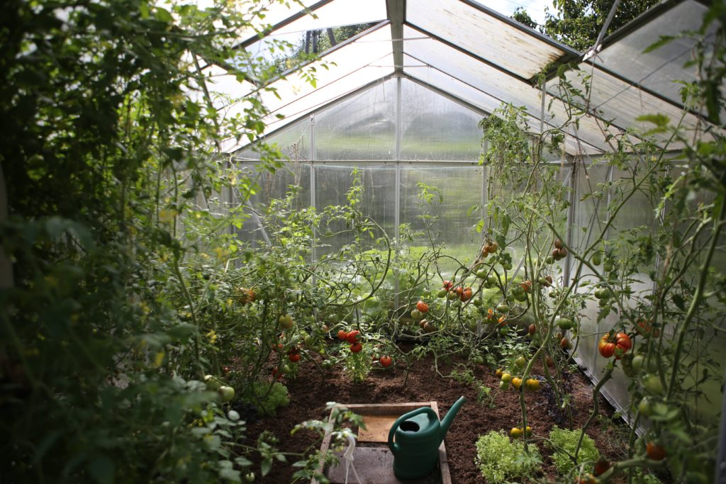 How To Turn Your Raised Bed Into A Greenhouse