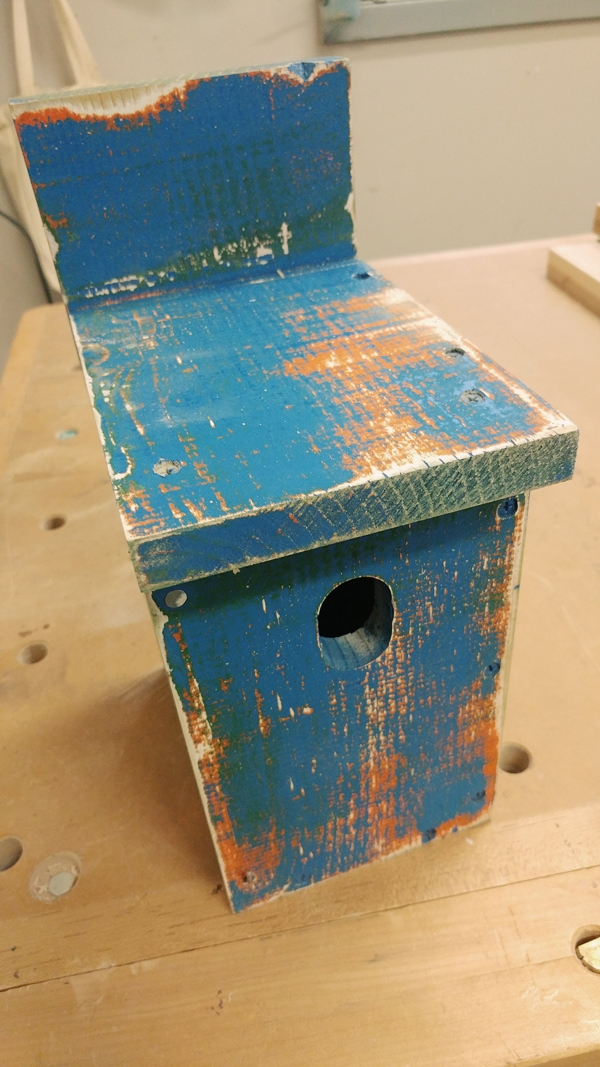 How to Build a Simple Bluebird Nest Box