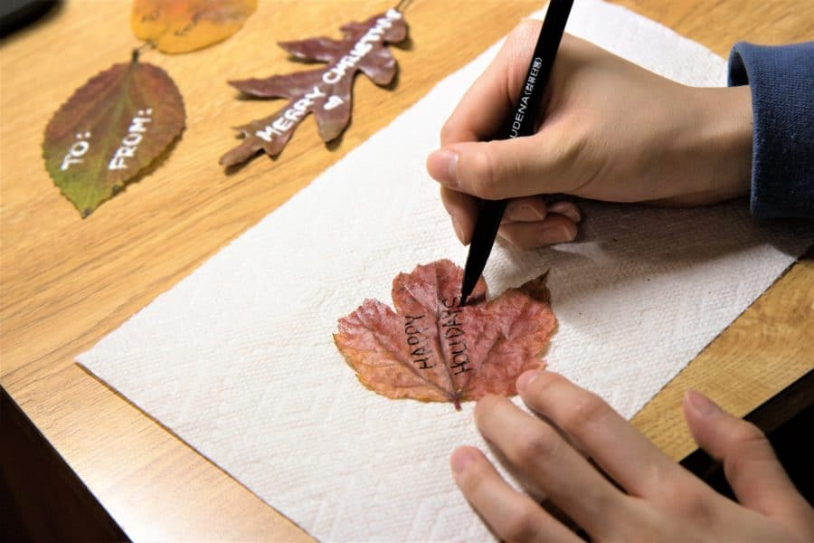 How to Make Gift Tags Out of Autumn Leaves 5