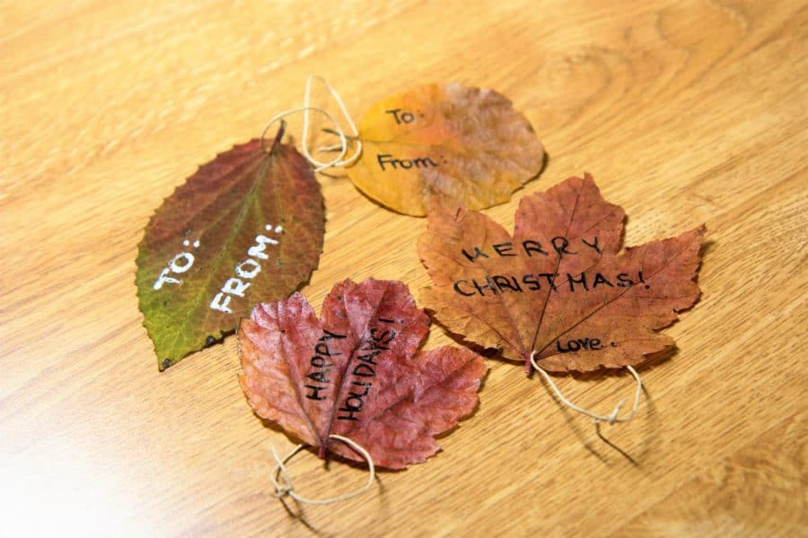 How to Make Gift Tags Out of Autumn Leaves 7